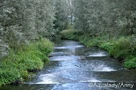 Tashlich river