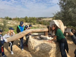 israel-5777-2-2
