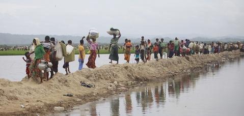 rohingya-refugees-795